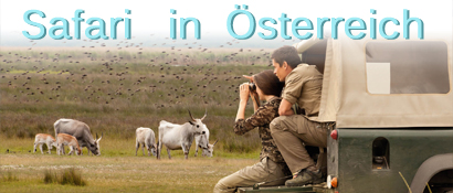 Österreich , St Martins Therme & Lodge, Safari