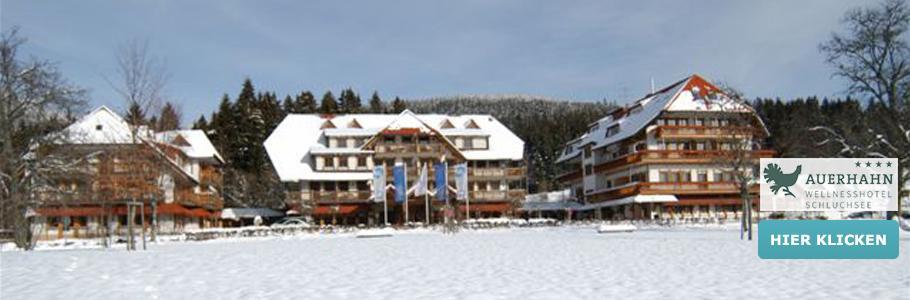Wellnesshotel Auerhahn, Schnee, Winter, Berge, Natur, Wald