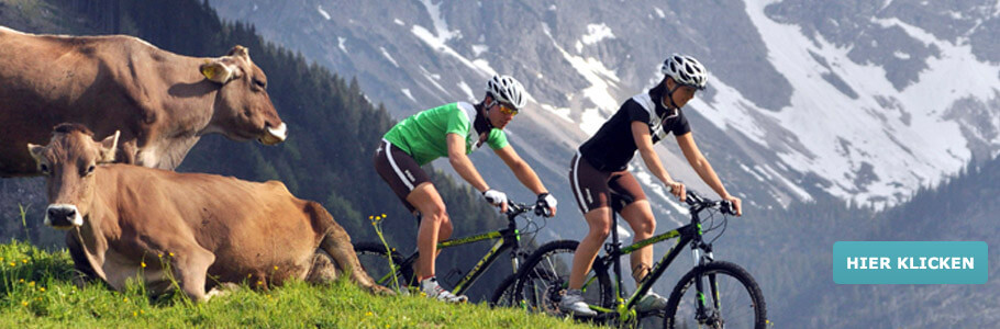 Wellness, Bewegung, Berge, Mountain, Bike